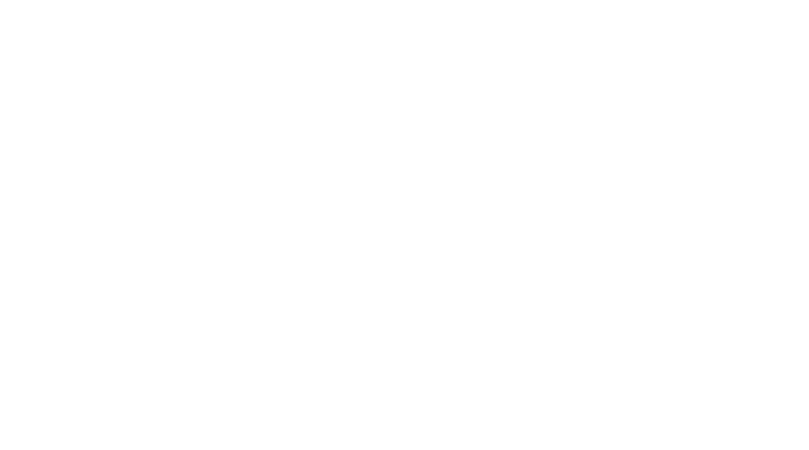 Chef d'Equipe